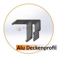 Alu - Deckenprofil - 2,0 m